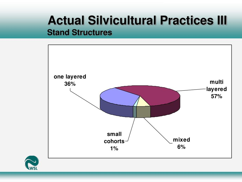 Actual Silvicultural Practices III