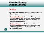 plantation forestry a goal to achieve