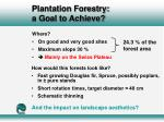 plantation forestry a goal to achieve26