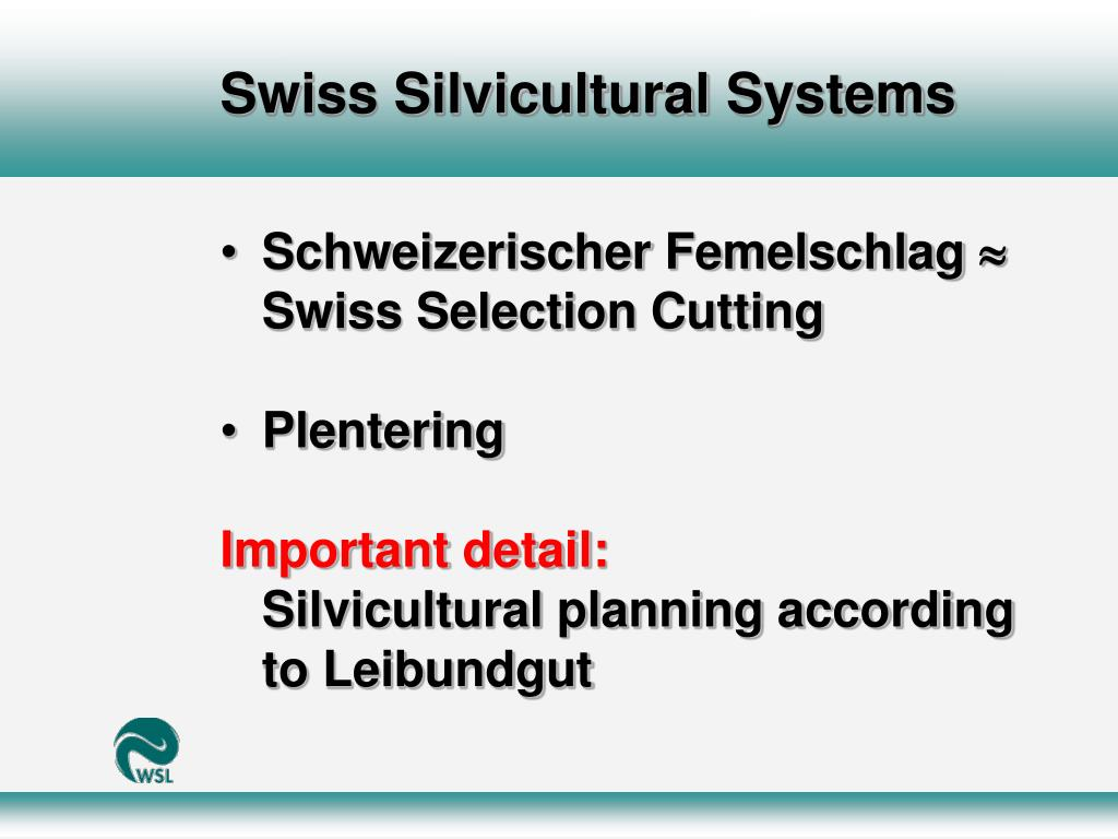 Swiss Silvicultural Systems