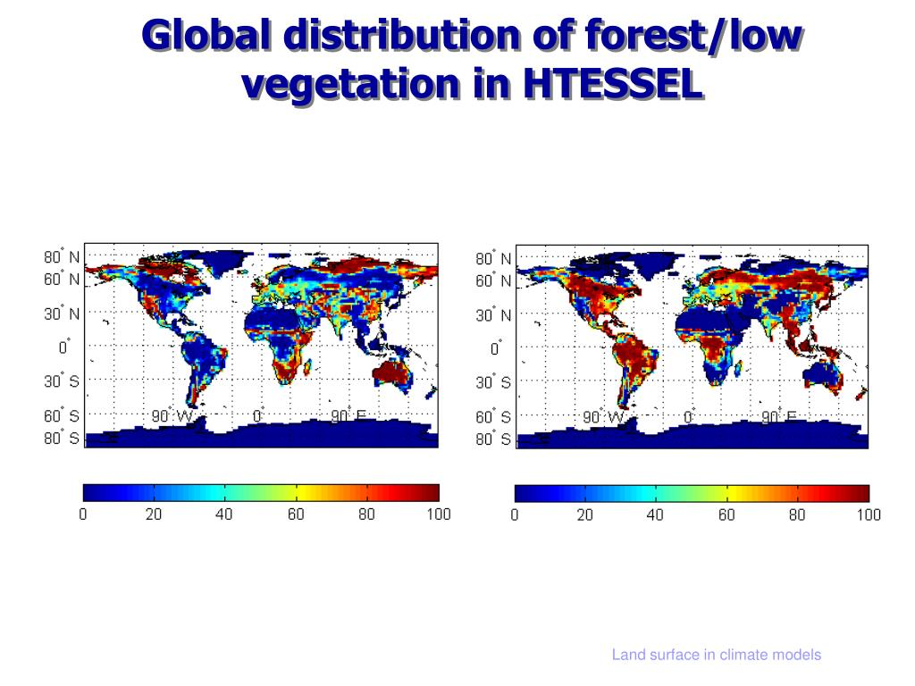 Global distribution of forest/low vegetation in HTESSEL