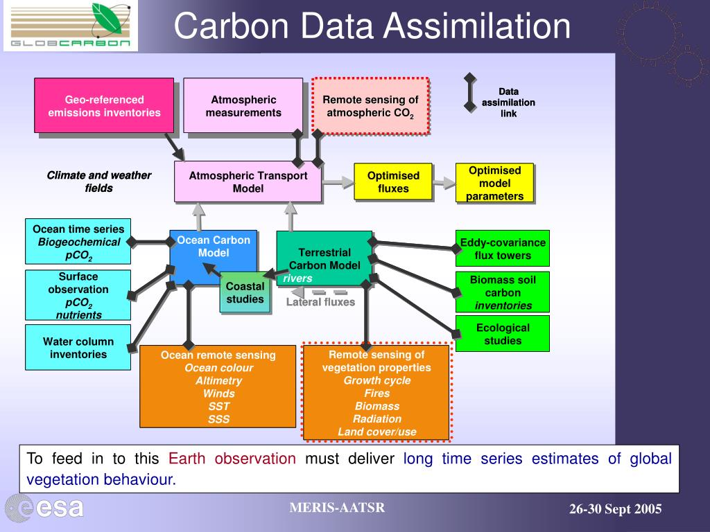 Carbon Data Assimilation