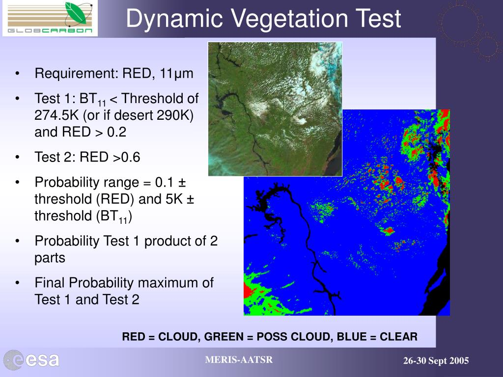 Dynamic Vegetation Test