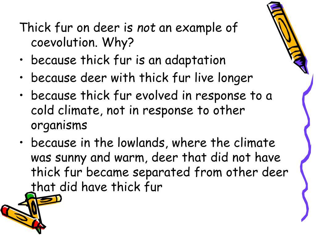 Thick fur on deer is