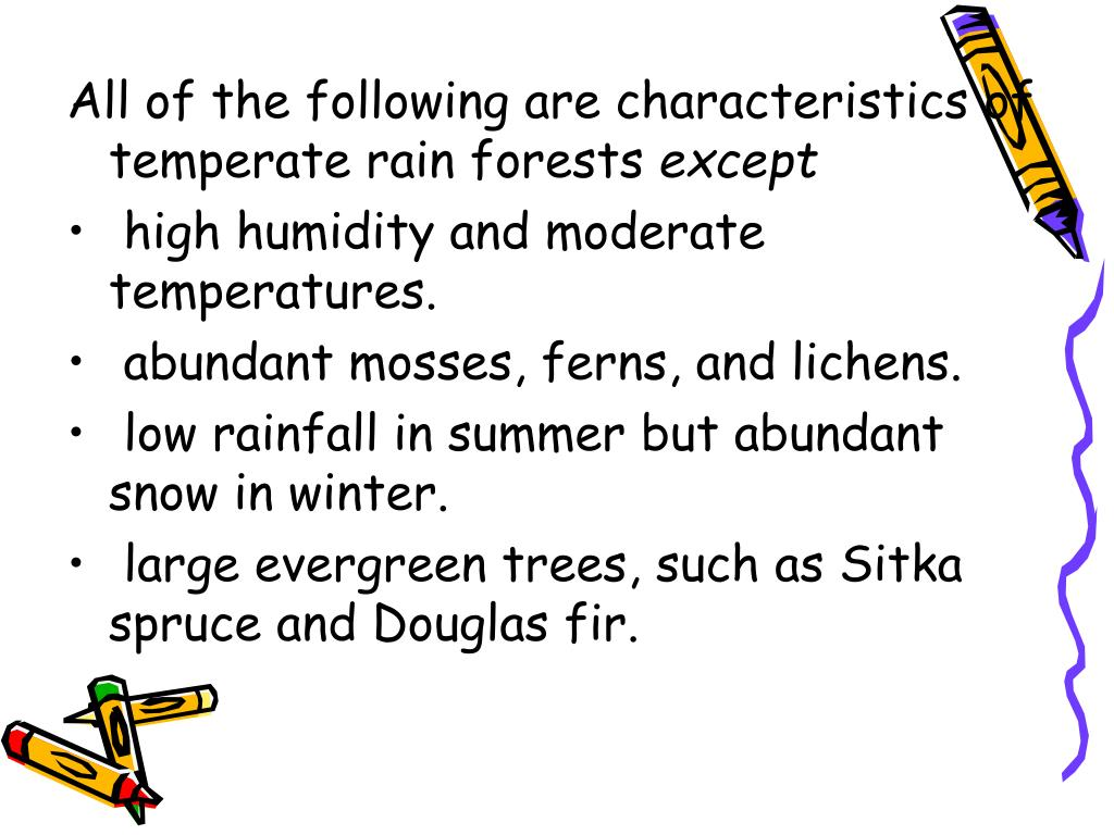 All of the following are characteristics of temperate rain forests