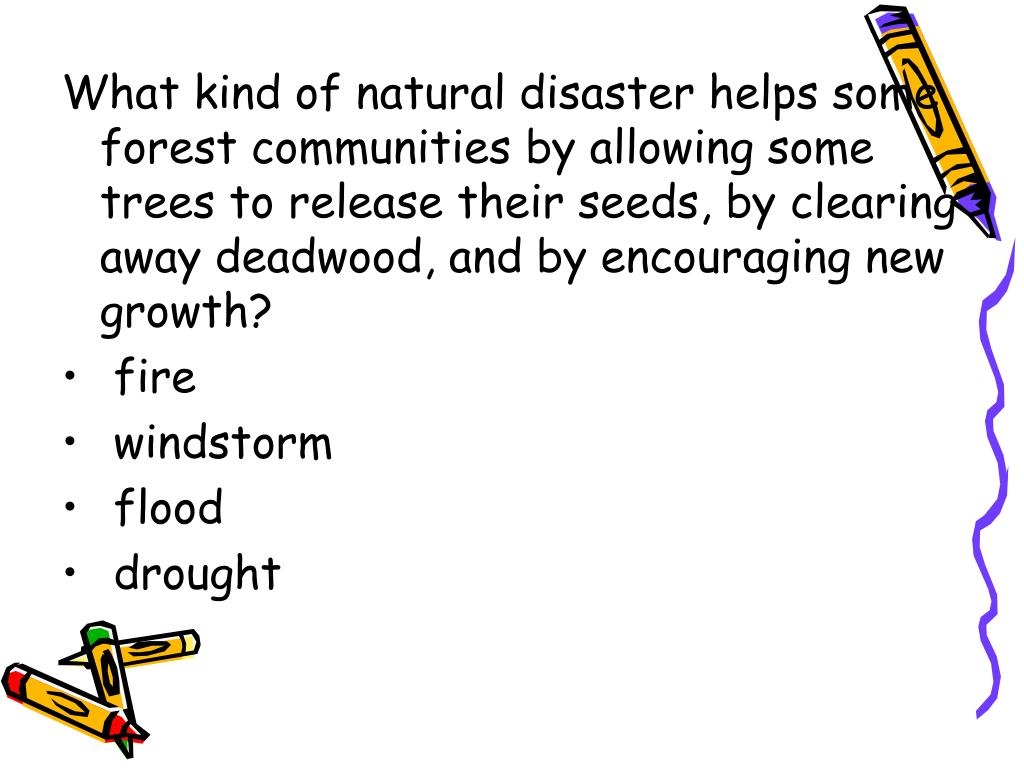 What kind of natural disaster helps some forest communities by allowing some trees to release their seeds, by clearing away deadwood, and by encouraging new growth?