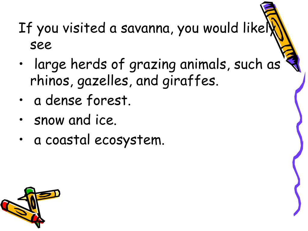 If you visited a savanna, you would likely see