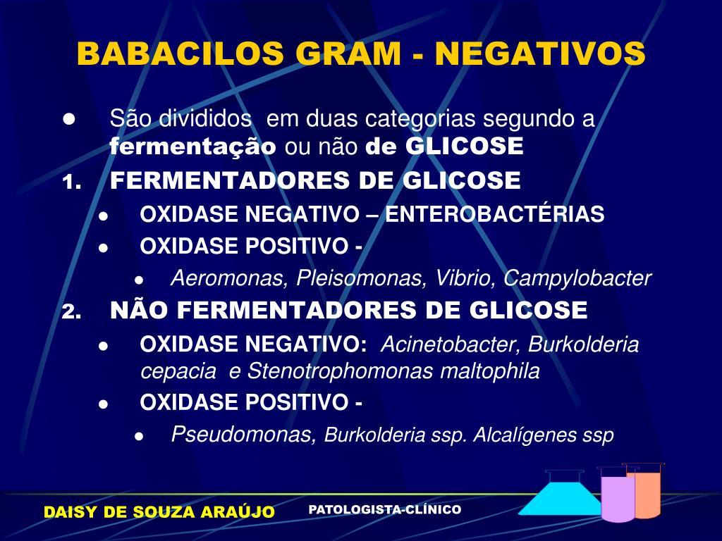 BABACILOS GRAM - NEGATIVOS