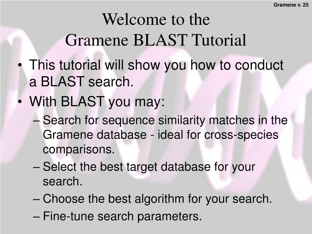 welcome to the gramene blast tutorial l.