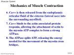 mechanics of muscle contraction9