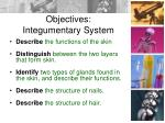 objectives integumentary system