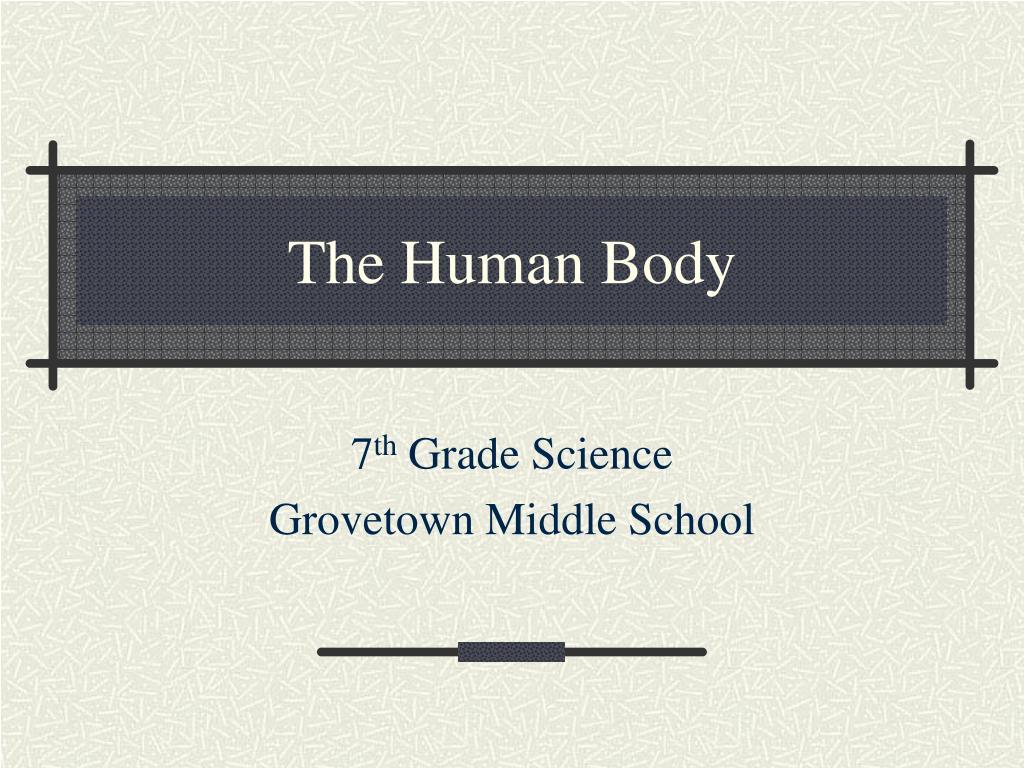 the human body l.