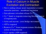 role of calcium in muscle excitation and contraction