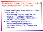 describe the two types of receptors involved in proprioception and their function