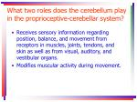 what two roles does the cerebellum play in the proprioceptive cerebellar system