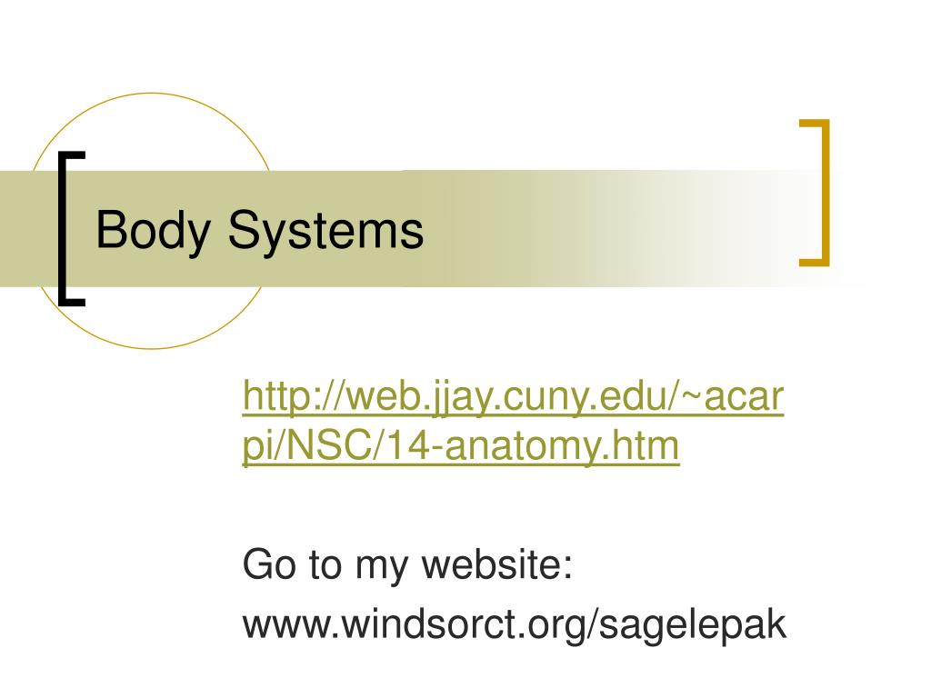 body systems l.