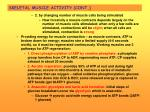 skeletal muscle activity cont