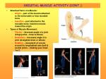 skeletal muscle activity cont16