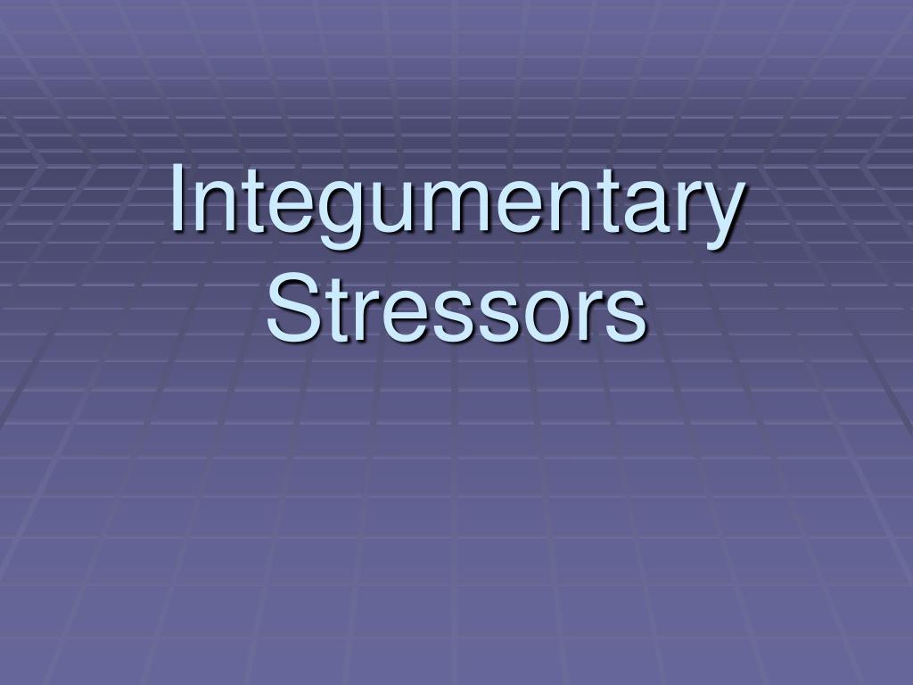 integumentary stressors l.