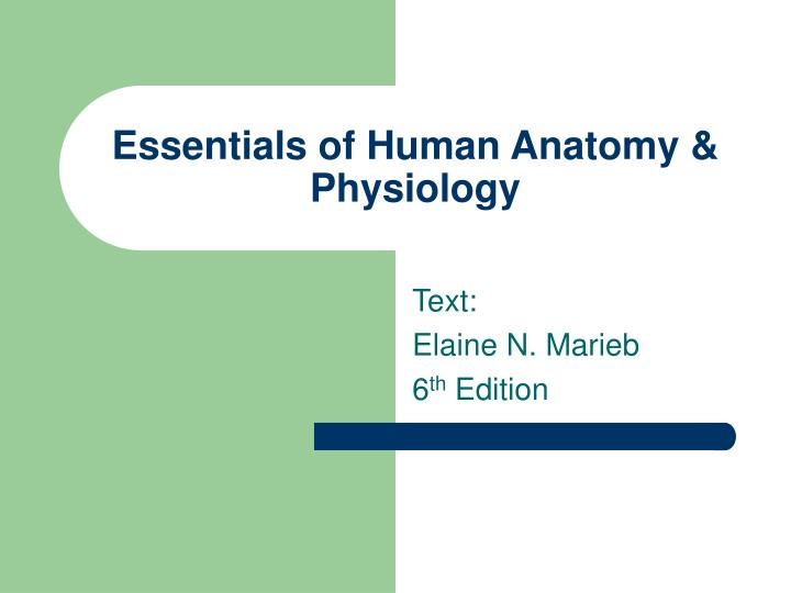 PPT - Essentials of Human Anatomy & Physiology PowerPoint ...