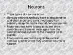 neurons7