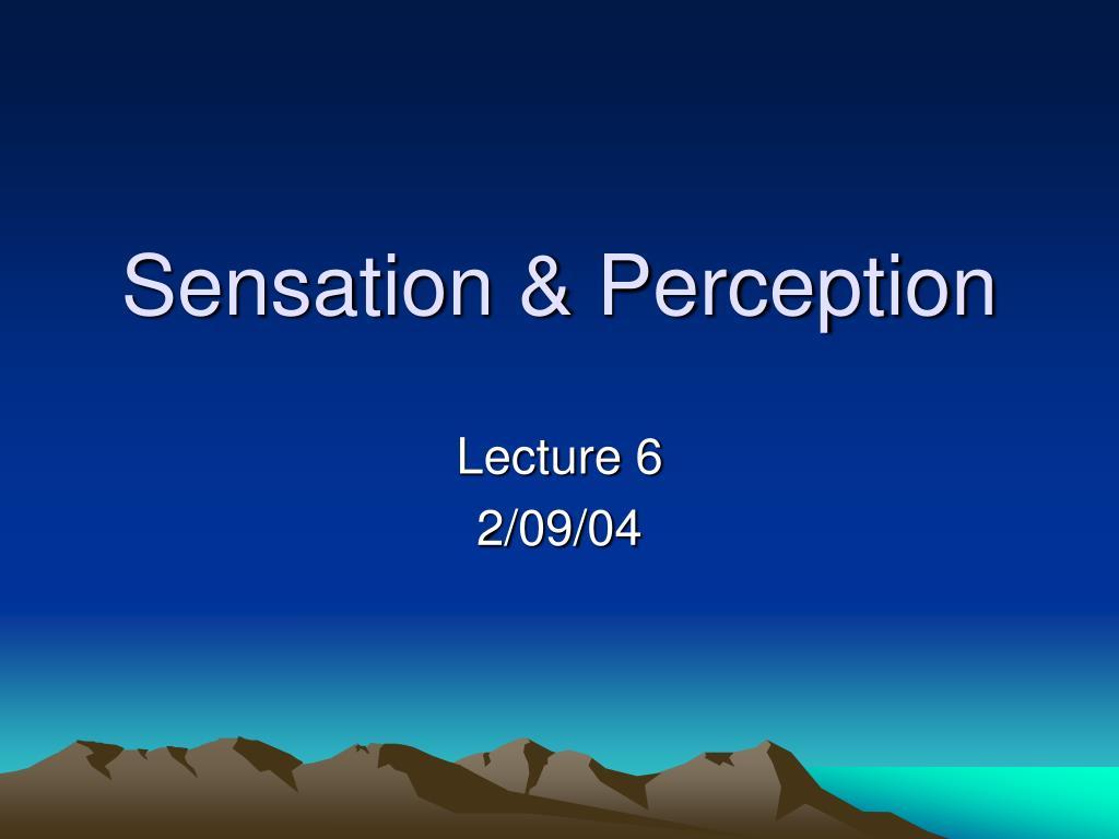 sensation perception l.