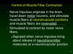 control of muscle fiber contraction
