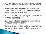 how to use the maturity model