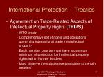 international protection treaties