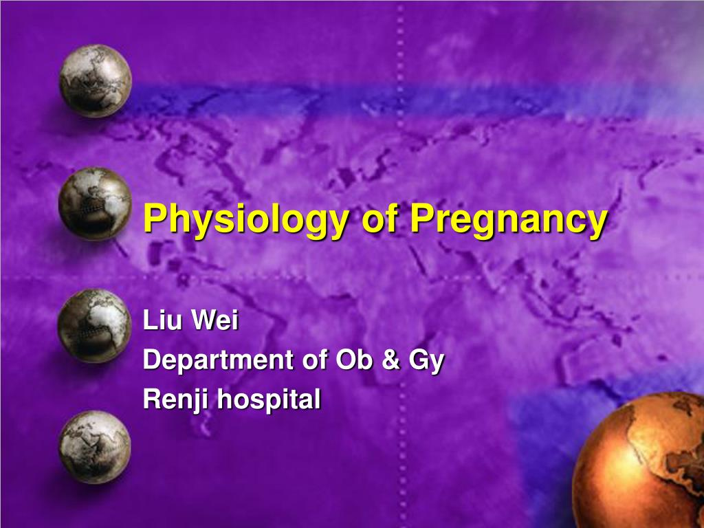PPT - Physiology of Pregnancy PowerPoint Presentation - ID:588657