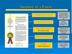 anatomy of a patent