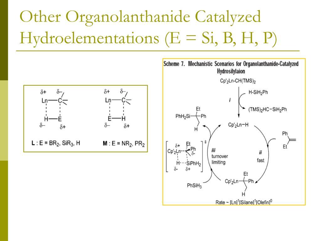 Other Organolanthanide Catalyzed Hydroelementations (E = Si, B, H, P)