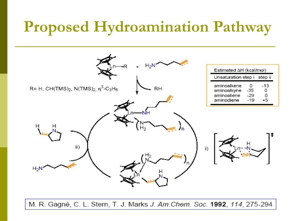 Proposed Hydroamination Pathway