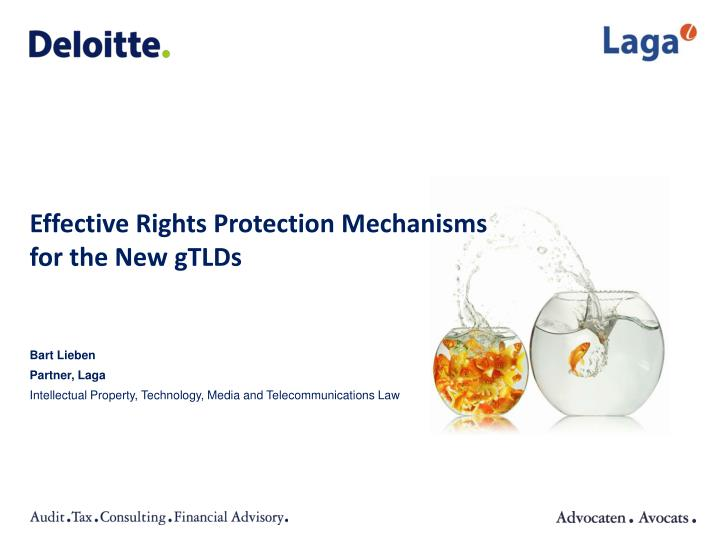 Effective Rights Protection Mechanisms