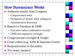 how bureaucracy works