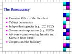 the bureaucracy6