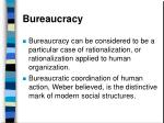 bureaucracy19