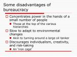 some disadvantages of bureaucracy