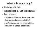 what is bureaucracy