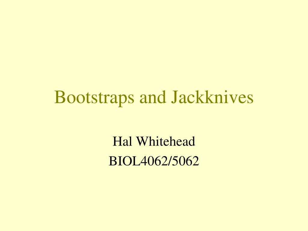 bootstraps and jackknives l.