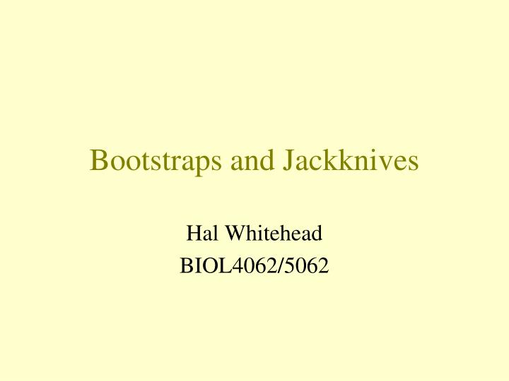 bootstraps and jackknives n.