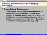 culture adolescence and emerging adulthood10