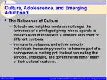 culture adolescence and emerging adulthood7