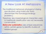 a new look at metazoans
