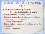 evolution of the animal body plan16