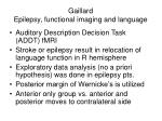 gaillard epilepsy functional imaging and language