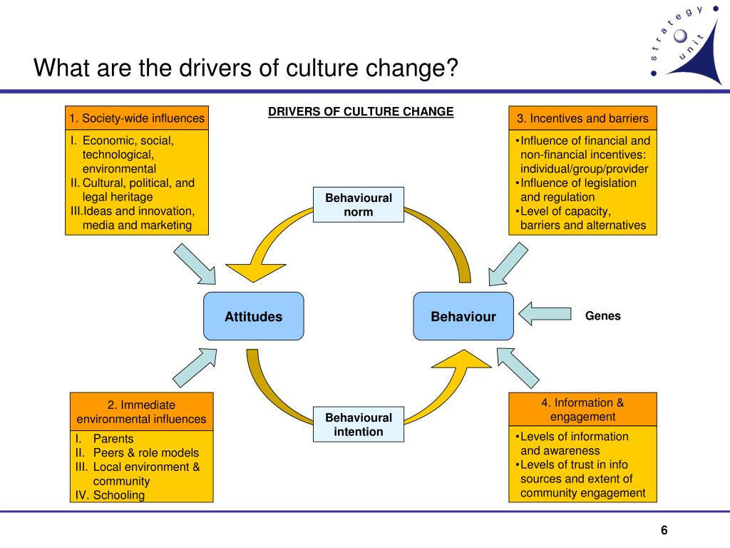 What are the drivers of culture change?