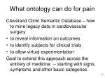 what ontology can do for pain