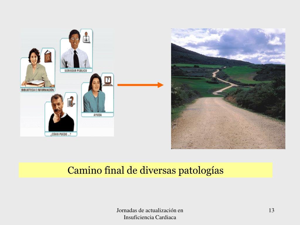 Camino final de diversas patologías
