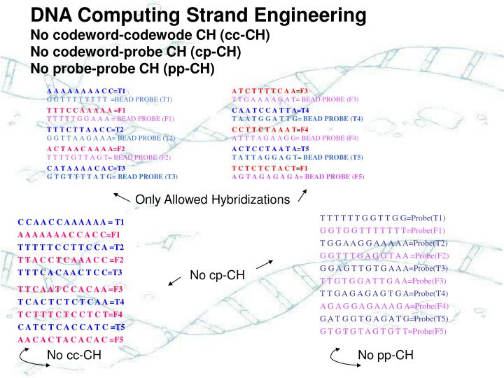 DNA Computing Strand Engineering